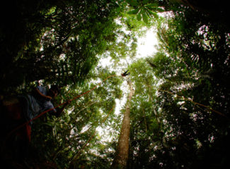 El Almejal actividades Ecoturismo