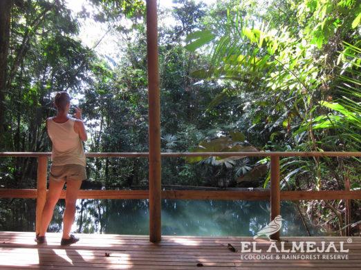 el almejal hotel en bahia solano pacifico colombiano reserva-natural