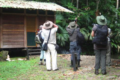 HOTEL EL ALMEJAL Birdwatching_herpetotheres-cachinans