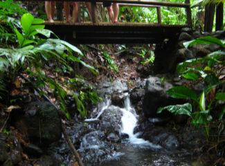 reserva natural el almejal hotel el almejal pacifico colombiano