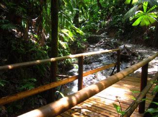 reserva-natural-el-almejal_riachuelo