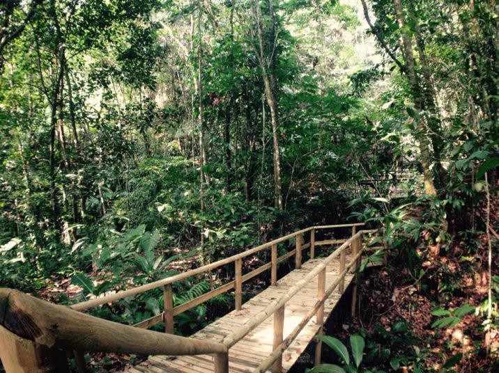 HOTEL EL ALMEJAL reserva natural senderos