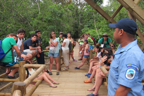 utria_copy-of-8-utria-parque-nacional-senderos-por-el-manglar