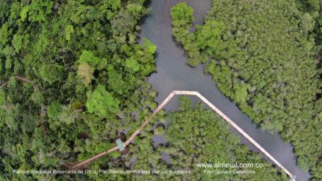 utria_foto-aerea-puente-sobre-el-manglar-utria