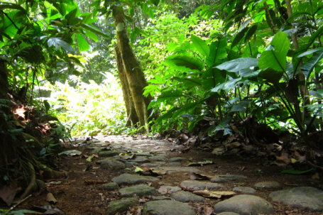 Reserva Natural, Bahía Solano