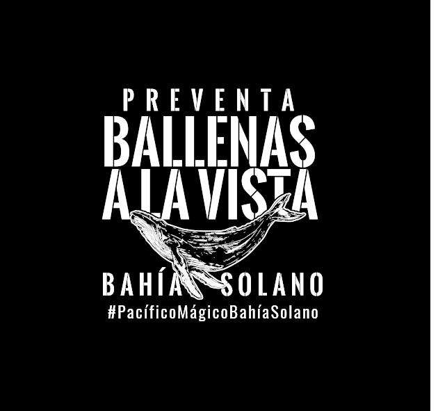 Preventa Ballenas a la VISTA - Bahía solano - Ecolodge El Almejal - whale watching
