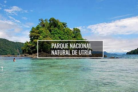 Ensenada de Utría - El Almejal - Hoteles en Bahía Solano Pacífico Colombiano